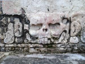 wiki skull