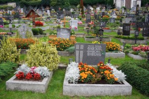 cemetery_with_flowers_184918